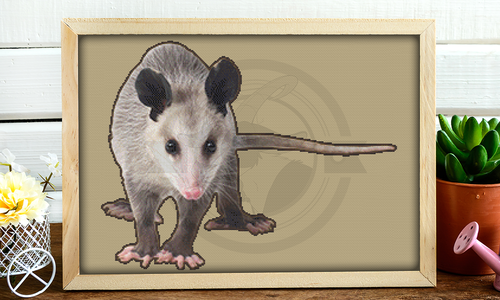 [CROSS STITCH PATTERN] Opossum