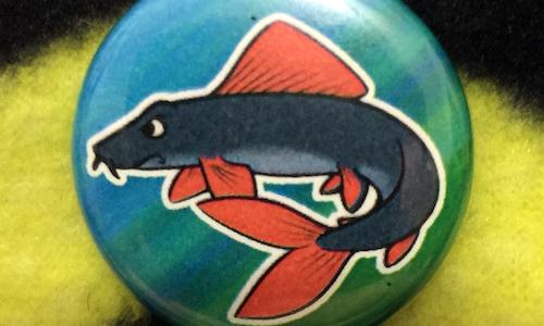 Rainbow Shark - Magnetic Needleminder